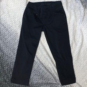 Jag Jeans Capri Pants